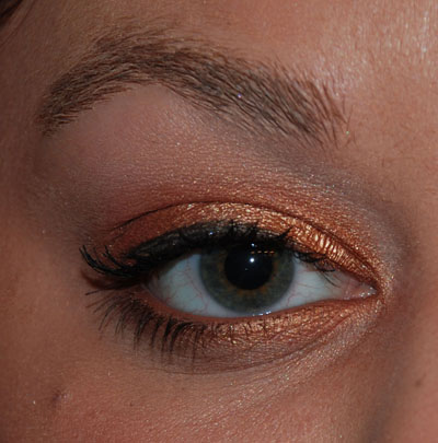 Closeup of bronze eye