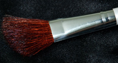 Bronzing Brush