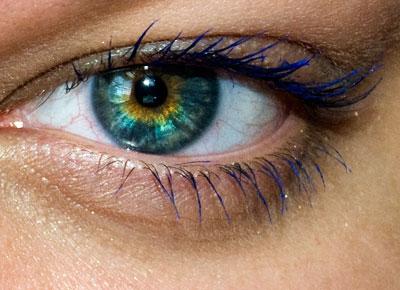 eye44