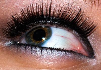 Tutorial: Chelsea Chic Eyes, using New York Color Metro Quartet eyelash Quartet eyeshadow Eyelid