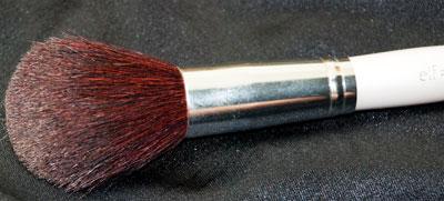 Total Face Brush