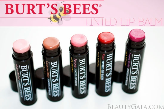 Burt S Bees Tinted Lip Balms Photographs Review Swatches